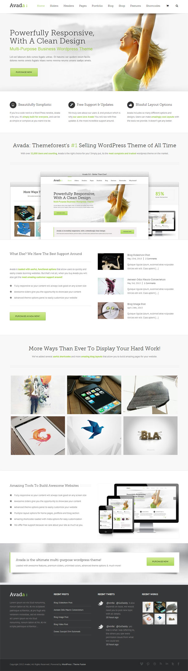 Avada The Most Popular WP Themes Theme Image