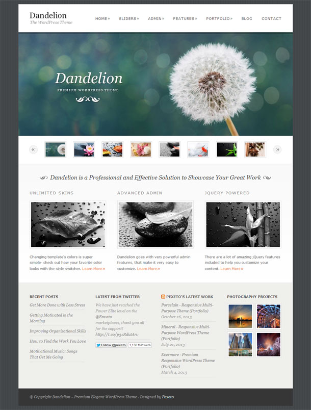 Dandelion The Most Popular WP Themes Theme Image