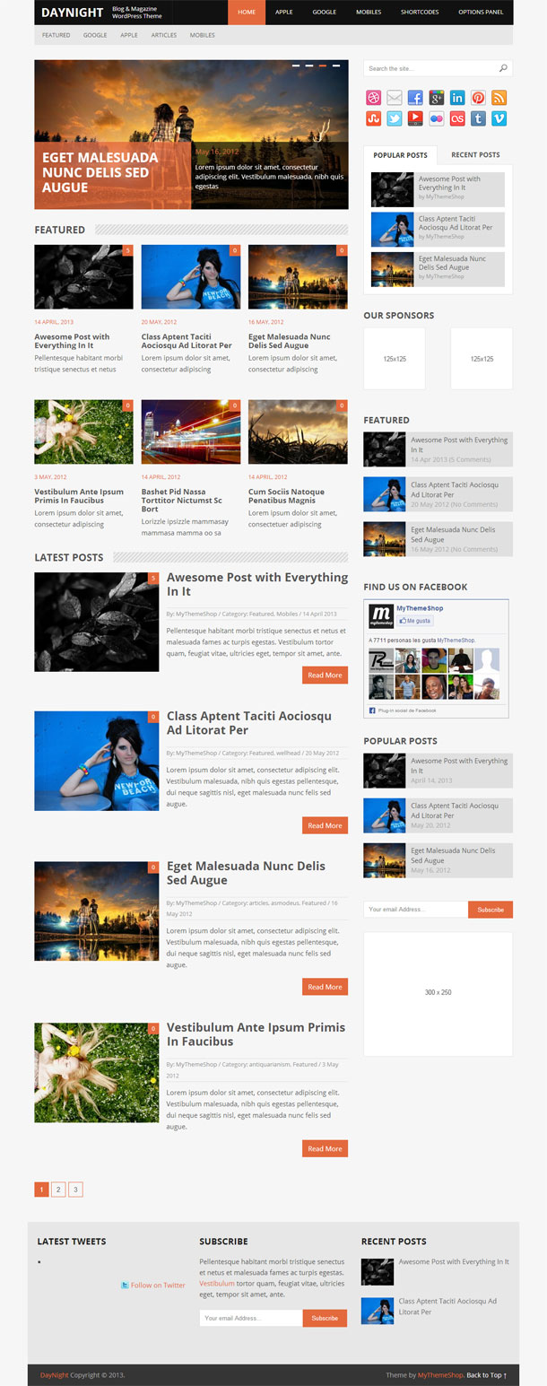 DayNight Best Responsive Theme Image