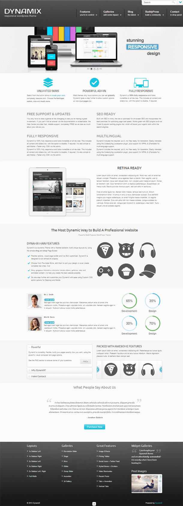 DynamiX The Most Popular WP Themes Theme Image