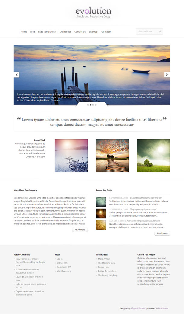 Evolution Multimedia WordPress Theme with Slider Image