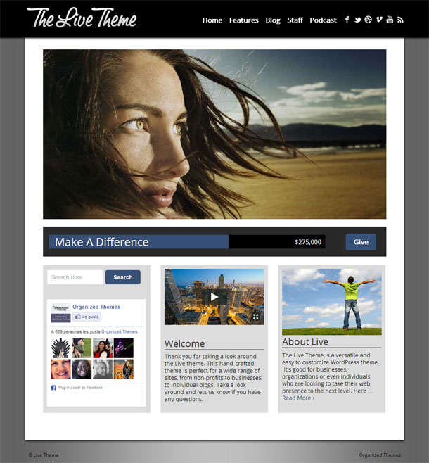 Live Best Non Profit WordPress Theme Image