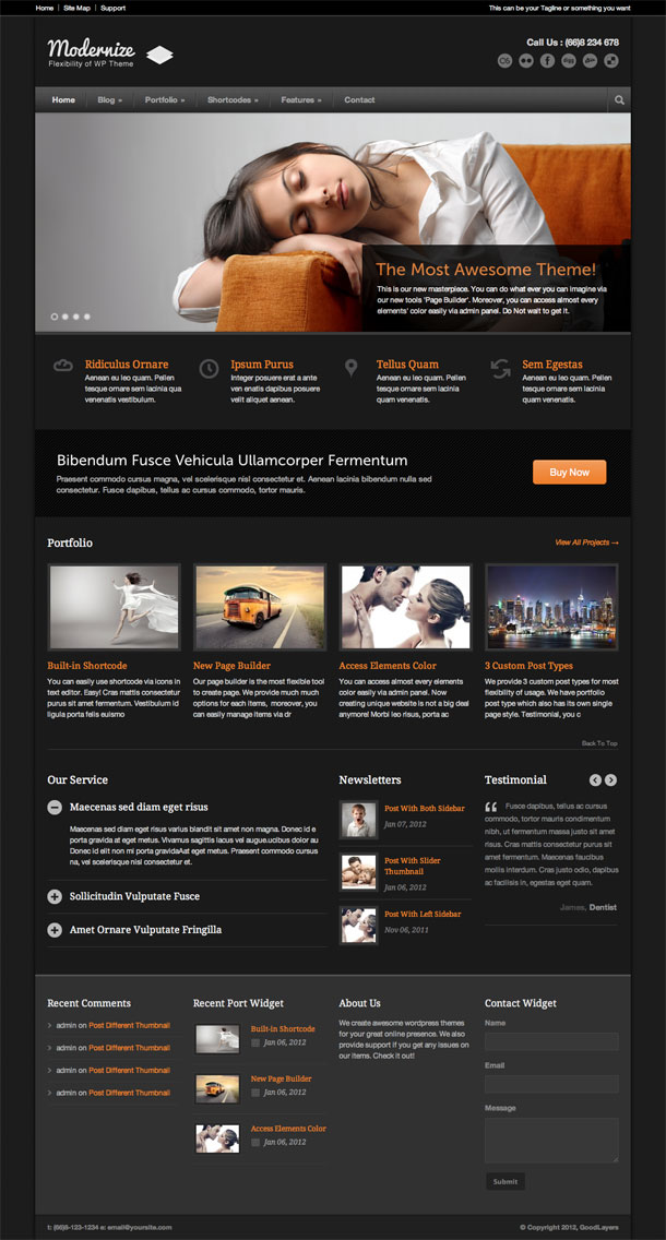 Modernize The Most Popular WP Themes Theme Image