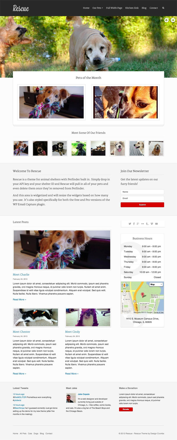 Rescue Best Non Profit WordPress Theme Image