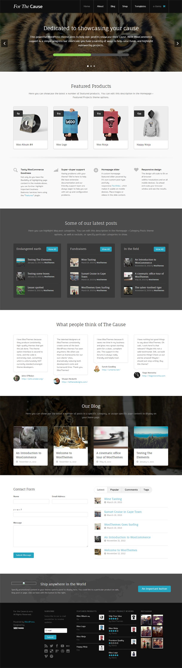 The Cause Awesome Multimedia WordPress Theme with Slider Image