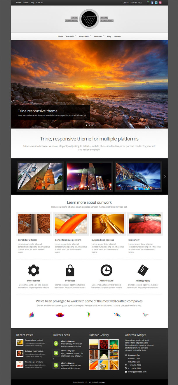 Trine Multimedia WordPress Theme with Slider Image