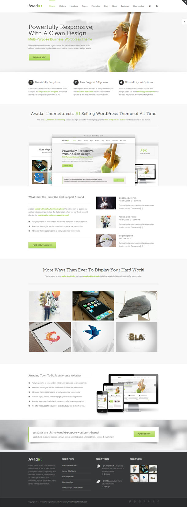 Avada Great WordPress Theme for 2014 image