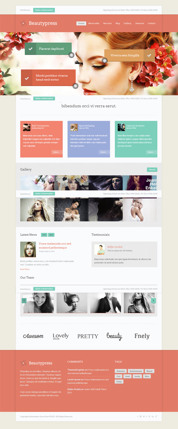 BeautyPress Feminine Theme Image