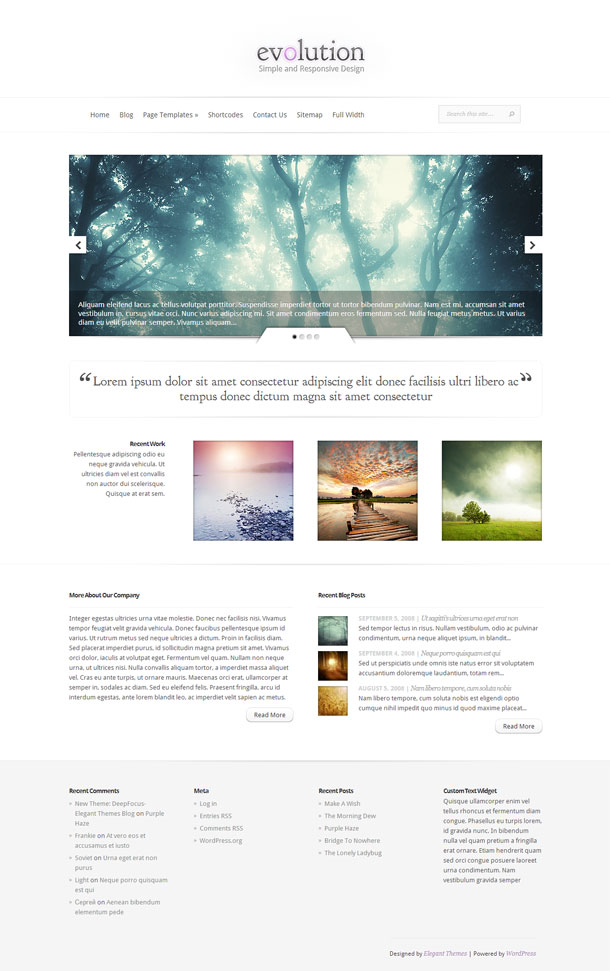 Evolution Great WordPress Theme for 2014 image