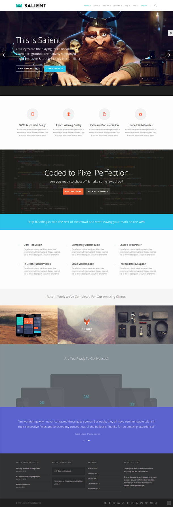 Salient Great WordPress Theme for 2014 image