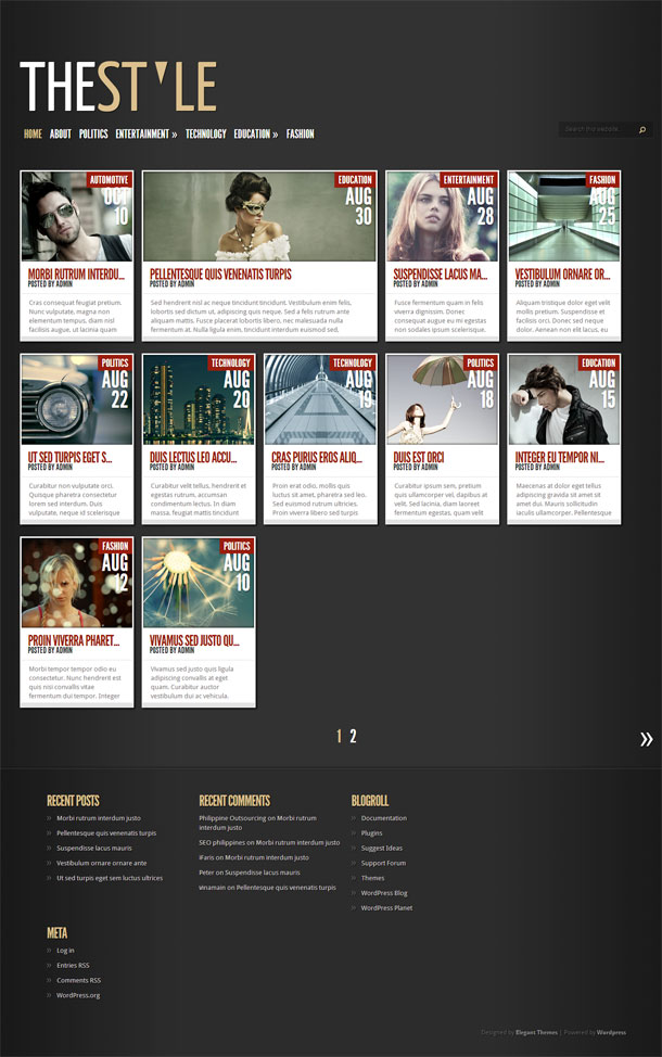TheStyle Great WordPress Theme for 2014 image