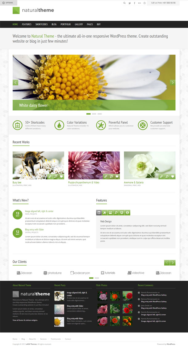 Natural Green Theme Image