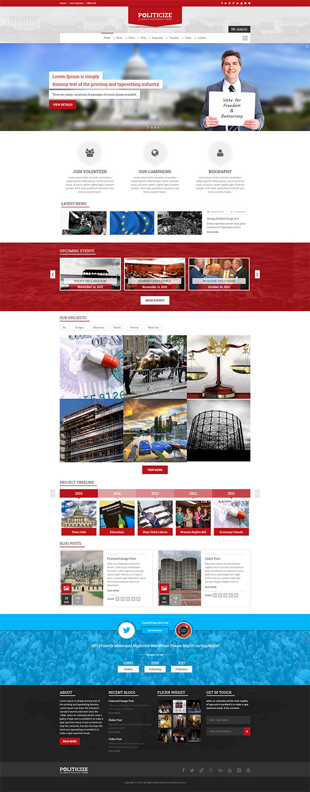Politicize WordPress Theme Image