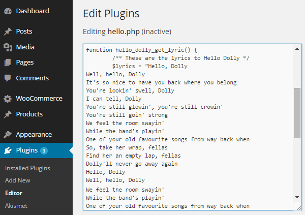 WordPress Plugin Editor
