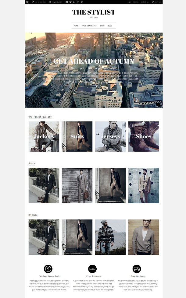 The Stylist Template Image
