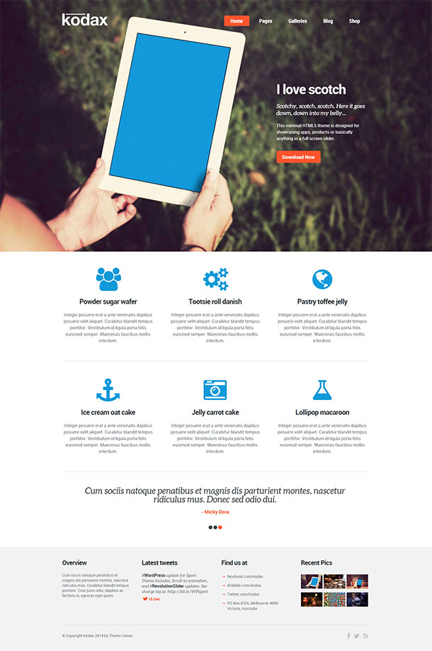Kodax WordPress Theme Image