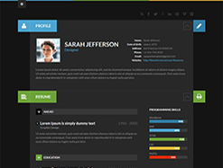 Resume & CV WordPress Themes