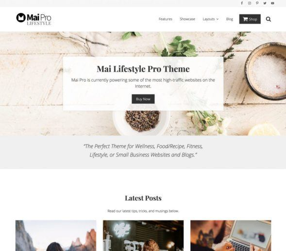 Mai Pro Lifestyle Child Theme